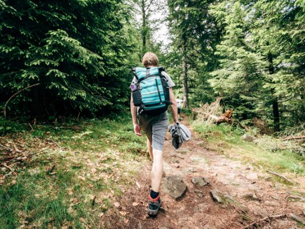 Sportlich unterwegs - Wandern im Wald